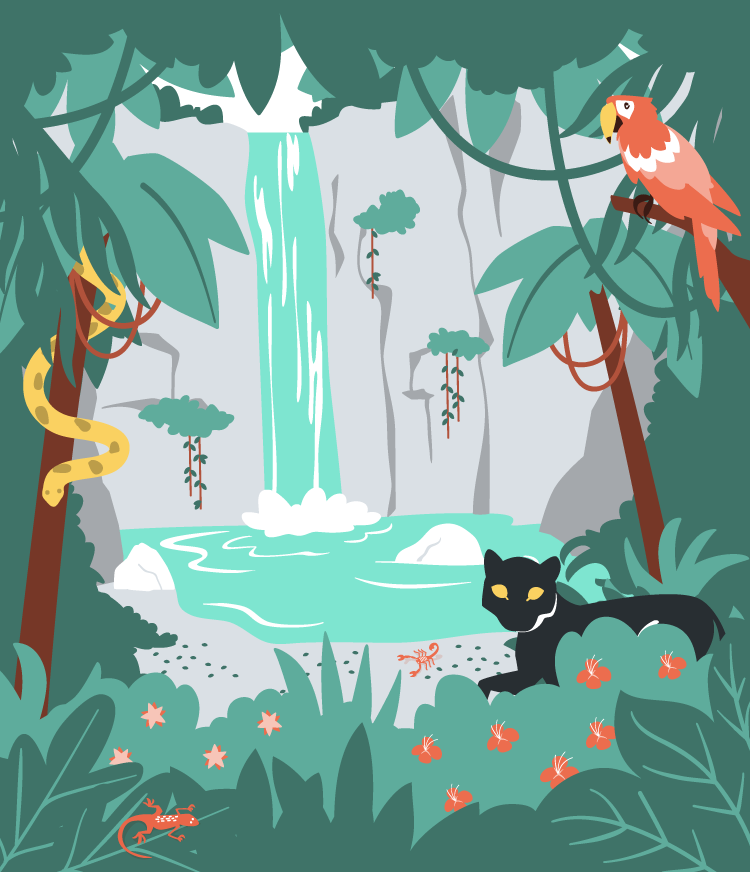 Rainforest Waterfall vector illustration for MoveSpring.