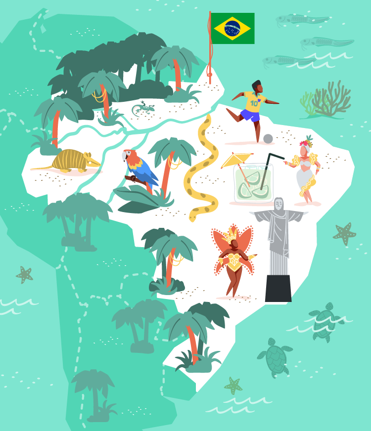 Brazil vector illustration for MoveSpring.