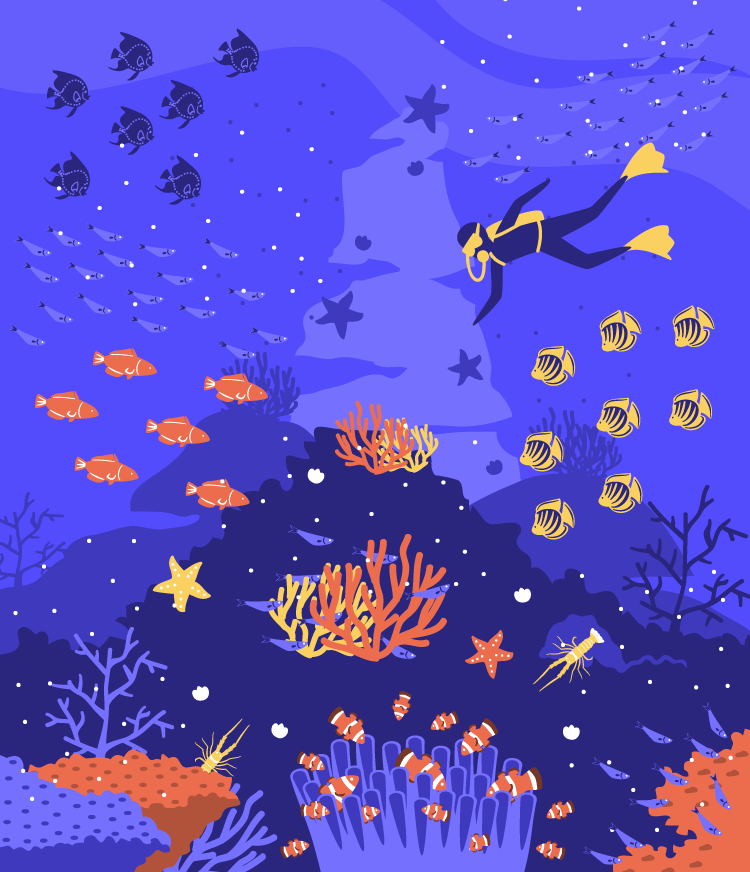 Coral Reef vector illustration for MoveSpring