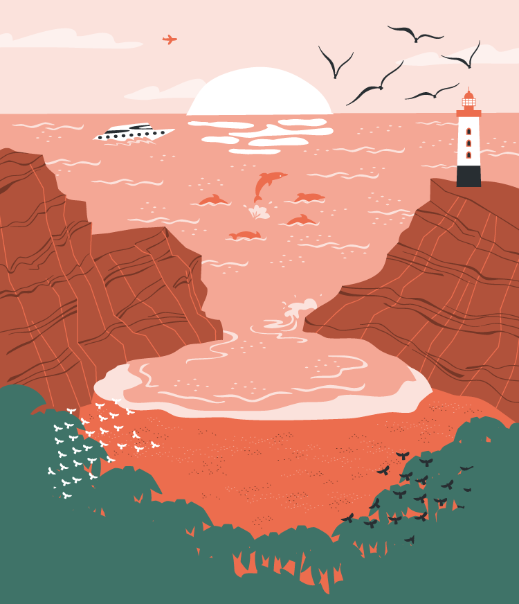 Cove vector illustration for MoveSpring.
